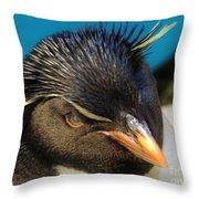 Southern Rock Hopper Penguin Throw Pillow
