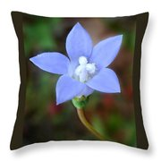 Wild Southern Rockbell  Throw Pillow