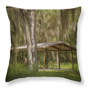Southern Shade Throw Pillow