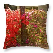 Southern Spring Color Throw Pillow