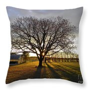 Southern Sunrise  Throw Pillow