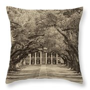 Southern Time Travel Sepia Throw Pillow by Steve Harrington