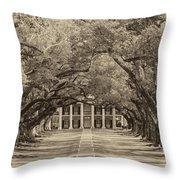 Southern Time Travel Sepia Throw Pillow