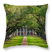 Southern Time Travel Throw Pillow
