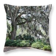 Southern Trees Throw Pillow