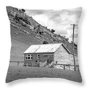 Southland Farmhouse Throw Pillow
