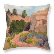 Southwest Delight Throw Pillow
