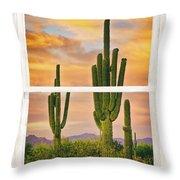 Southwest Desert Sunset White Rustic Distressed Window Art Throw Pillow