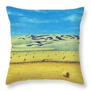 Southwest Sask. Throw Pillow