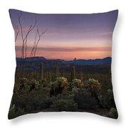Southwest Serenity  Throw Pillow