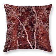 Southwest Texture Throw Pillow
