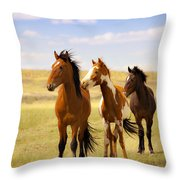 Southwest Wild Horses On Navajo Indian Reservation Throw Pillow