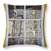 Souvenir Store Window Throw Pillow by Elena Elisseeva