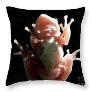 Space Frog Throw Pillow