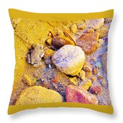 Spadefoot Toad Near Stones On Capitol Gorge Pioneer Trail In Capitol Reef National Park-utah Throw Pillow