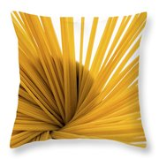 Spaghetti Spiral Throw Pillow