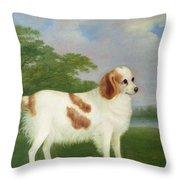 Spaniel In A Landscape Throw Pillow