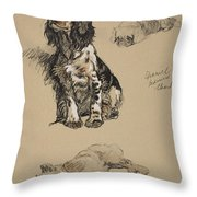 Spaniel, Pekinese And Chow, 1930 Throw Pillow