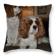 Spaniels Throw Pillow