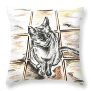 Spanish Cat Waiting Throw Pillow