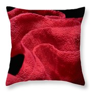 Spanish Dancer Eggs 1 Throw Pillow