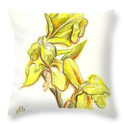 Spanish Irises Throw Pillow