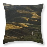 Spanish Landscape In Andalusia Throw Pillow