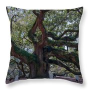 Spanish Moss Draped Limbs Throw Pillow
