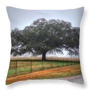 Spanish Oak IIi Throw Pillow