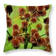 Sparganium Throw Pillow