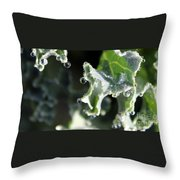 Sparkling Dew On Decorative Kale Throw Pillow