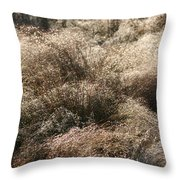 Sparkling Grasses Throw Pillow