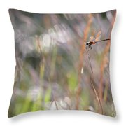 Sparkling Morning Sunshine With Dragonfly Throw Pillow