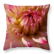 Sparkling Pink Dahlia Throw Pillow