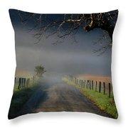 Sparks Lane Sunrise II Throw Pillow