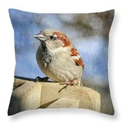 Sparrow 5   Throw Pillow