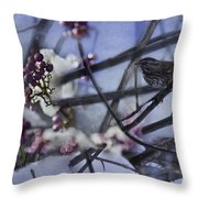 Sparrow And The Beauty Berry Throw Pillow