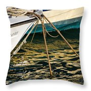 Sparrow At Lyme Regis Throw Pillow