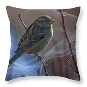 Sparrow In A Weave Throw Pillow