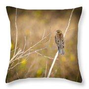 Sparrow In Marshland Throw Pillow by Carolyn Marshall