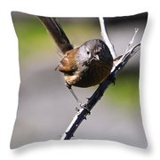 Sparrow On A Branch Throw Pillow