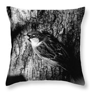 Sparrow On A Tree Throw Pillow