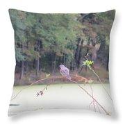 Sparrow On Arc Throw Pillow