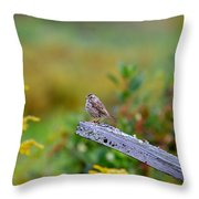 Sparrow On Board Throw Pillow