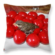 Sparrow On Red Eggs Throw Pillow