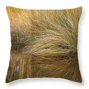 Spartina Grass  Throw Pillow