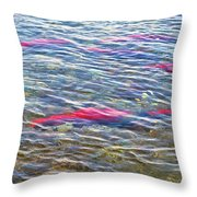 Spawning Salmon In Moraine River In Katmai National Preserve-ak Throw Pillow