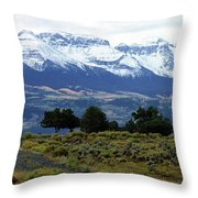 Speaking In Silence Throw Pillow