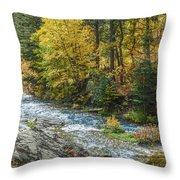 Spearfish Creek Autumn Throw Pillow