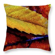 Spearpoint Throw Pillow